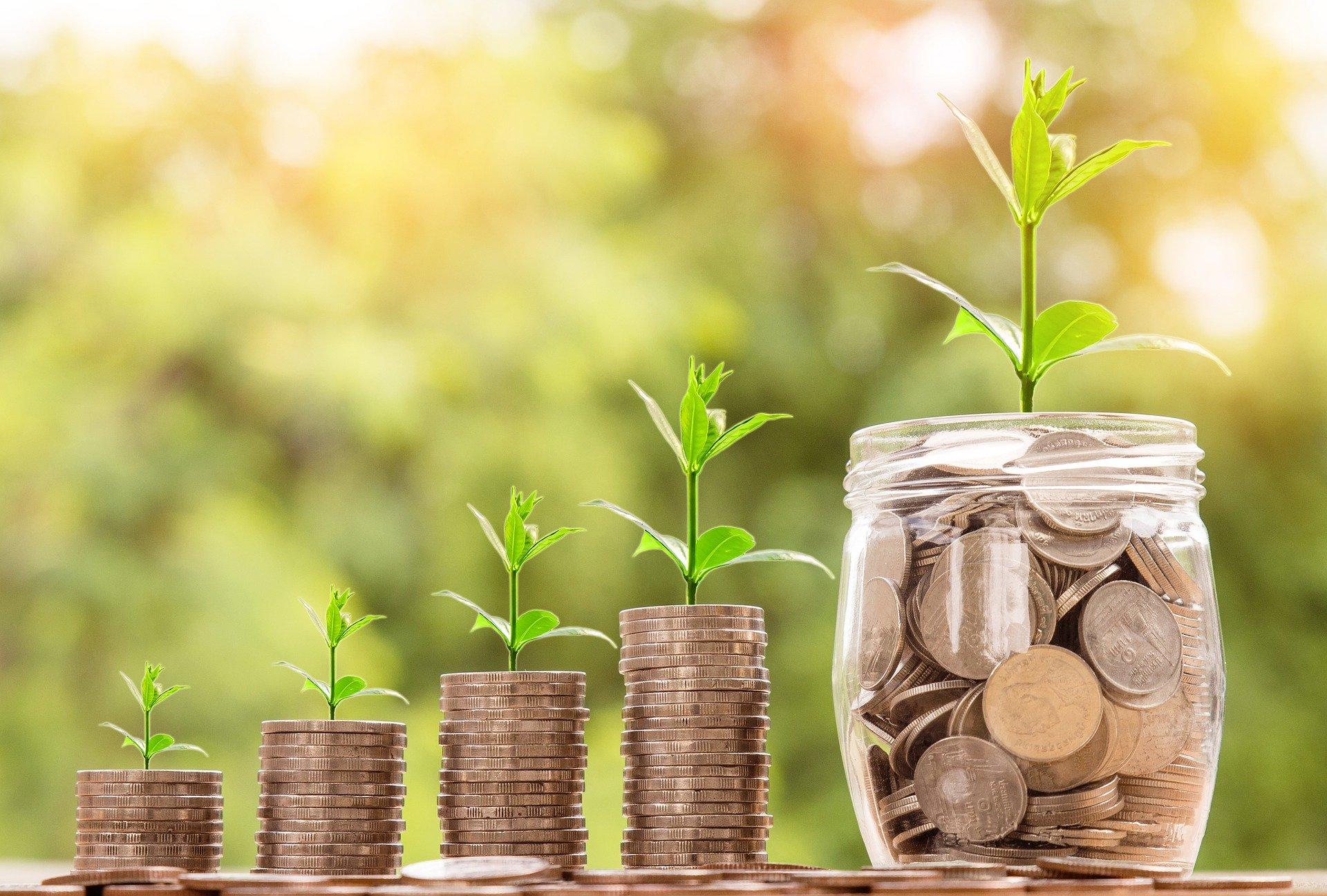 Invest To Maximise Allowances